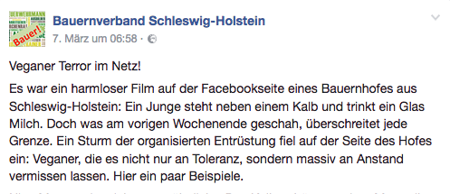 sturm schleswig holstein 2017