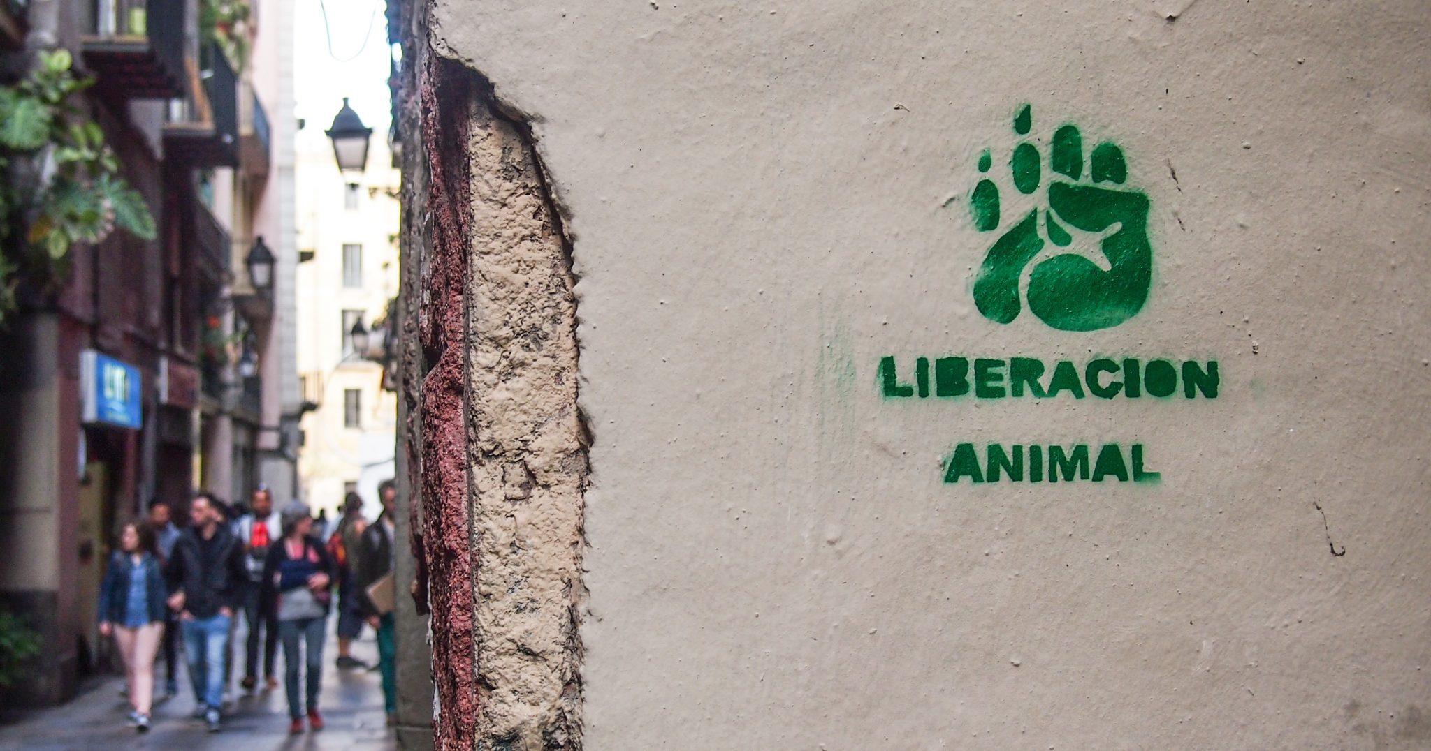 Barcelona vegan Report
